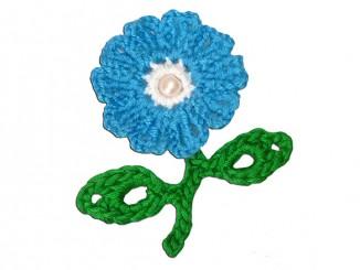 Цветок цикорий крючком